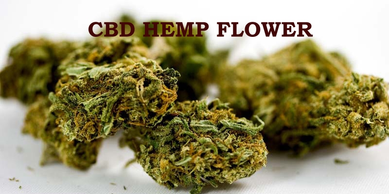 buy cbd flower
